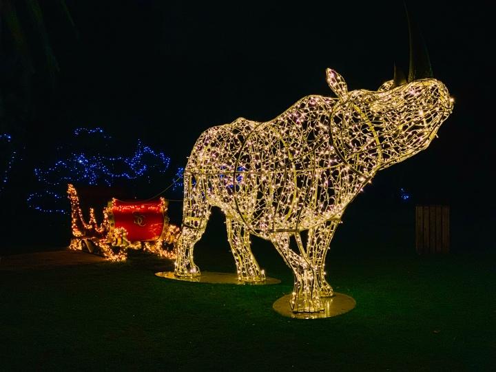 rhino lights statue and santa sleigh