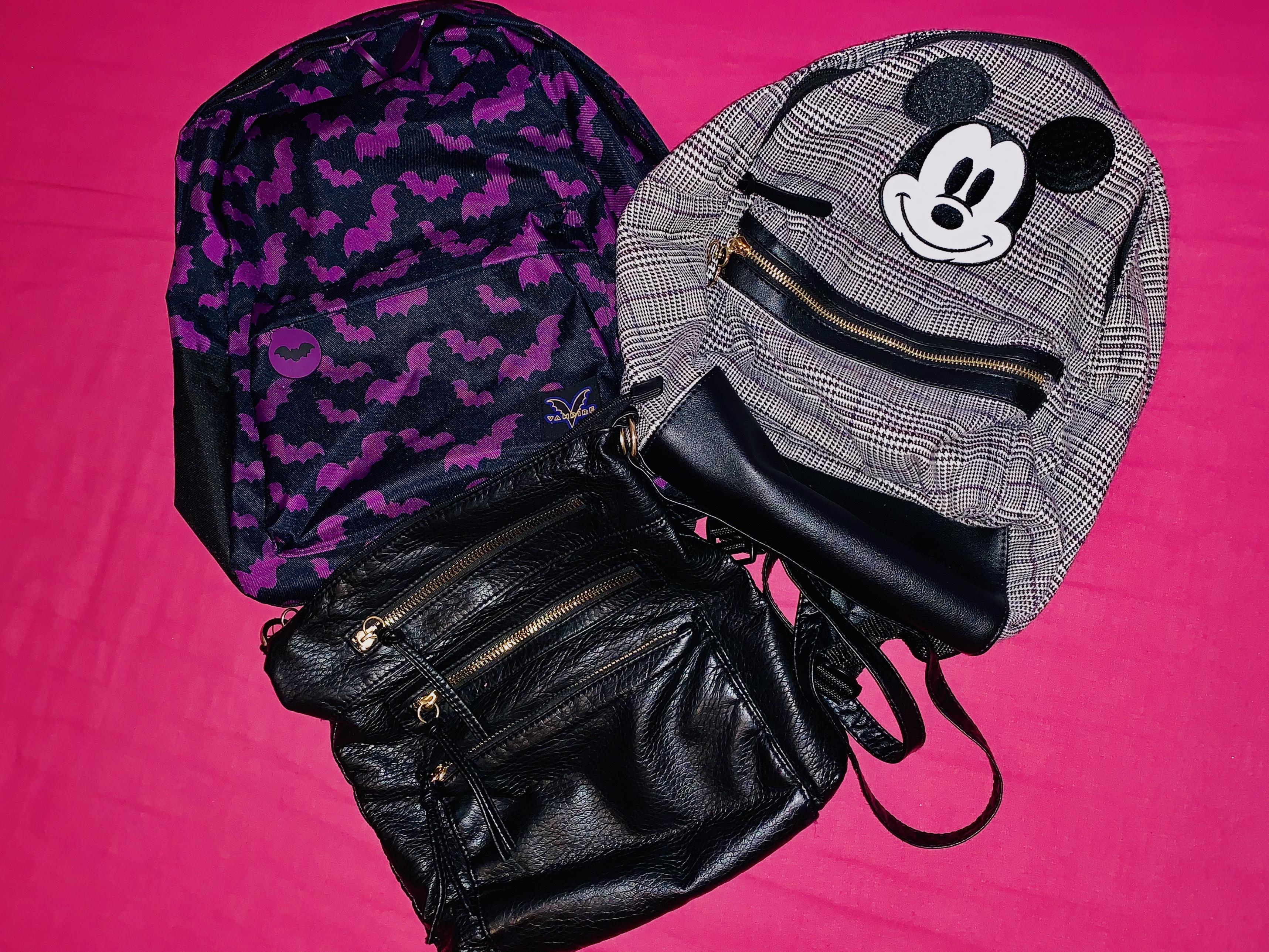 Theme-Park-Bag