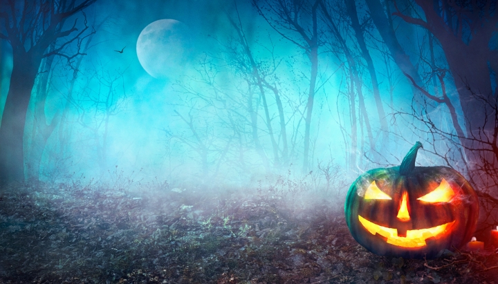 Top 8 Reasons to love Halloween season