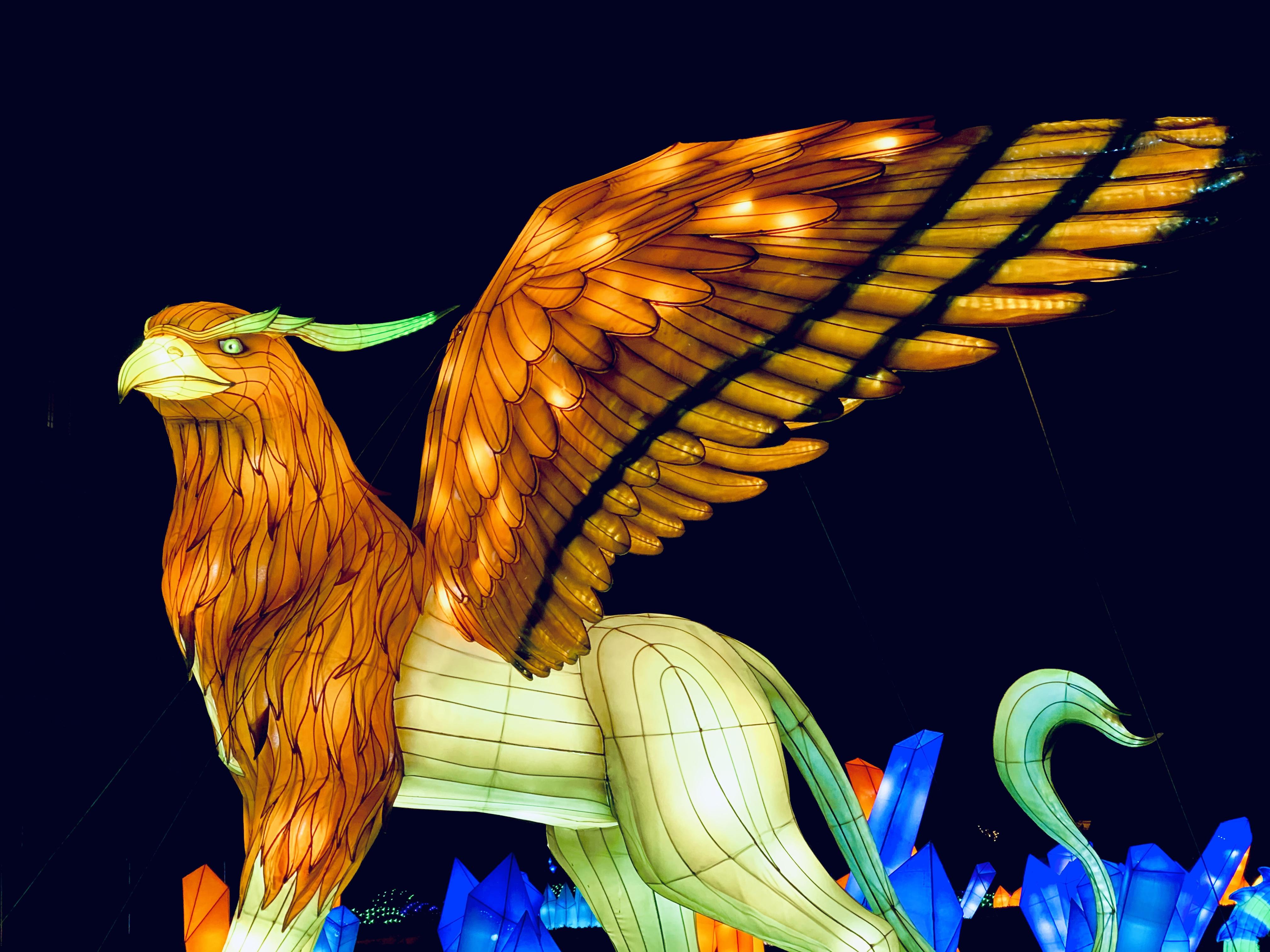 large griffon lantern