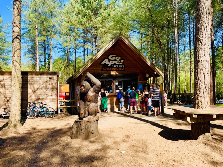 go ape moors valley country park