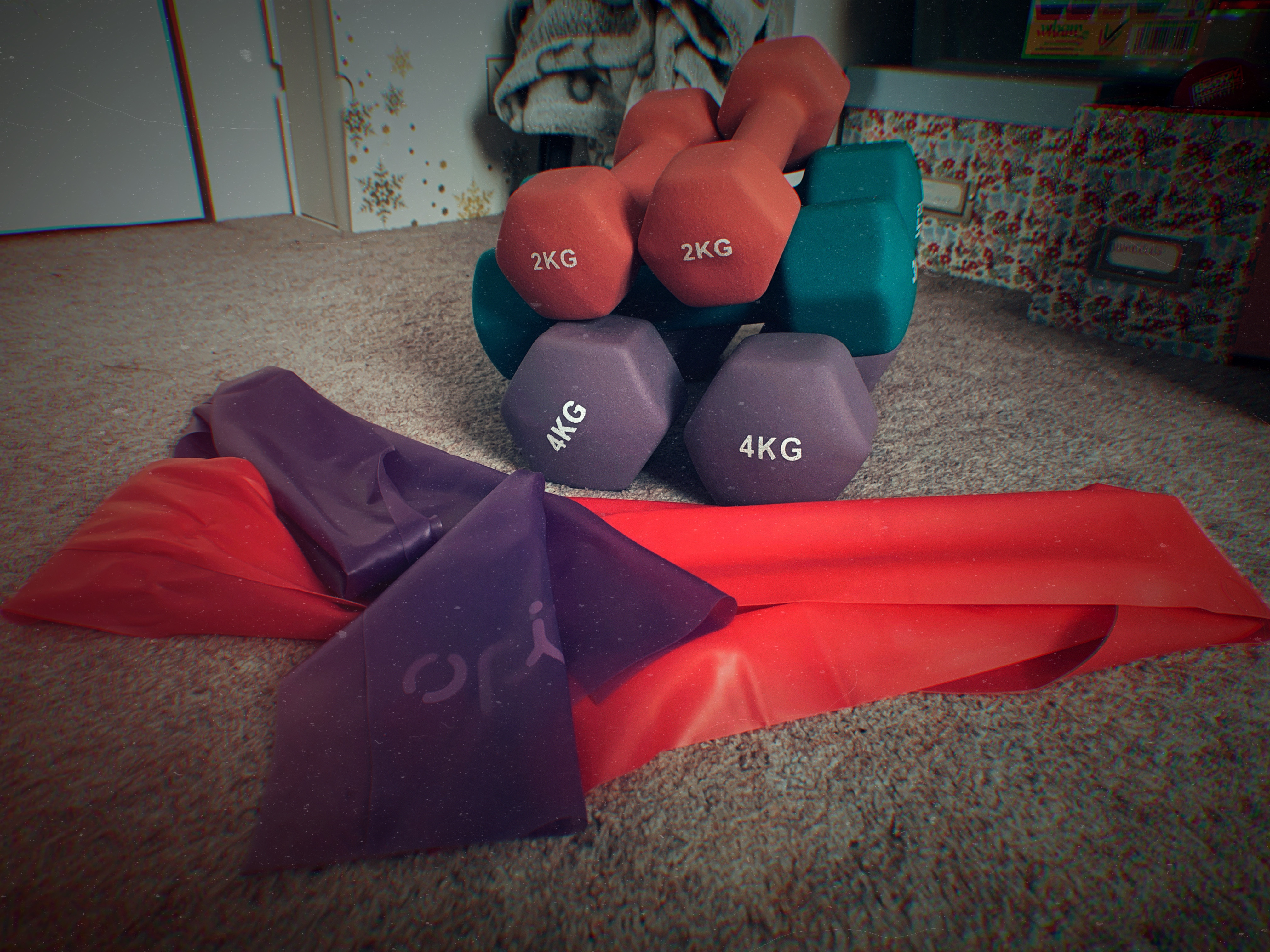 life update fitness dumbbells