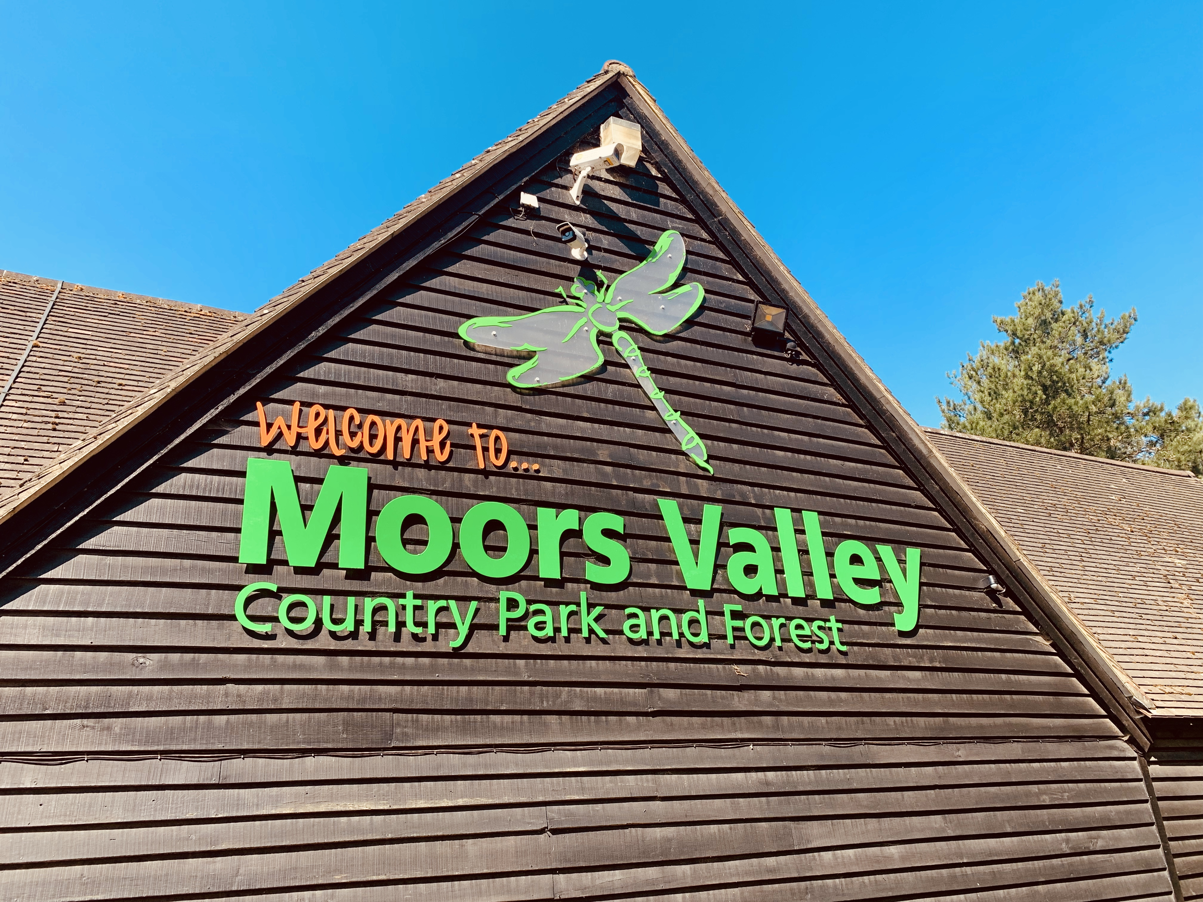 moors valley country park top 5 things to do