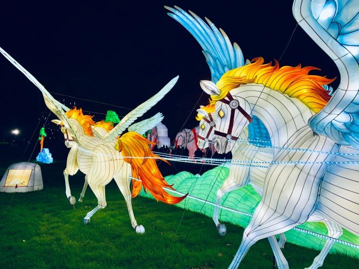 stampede of flying horses