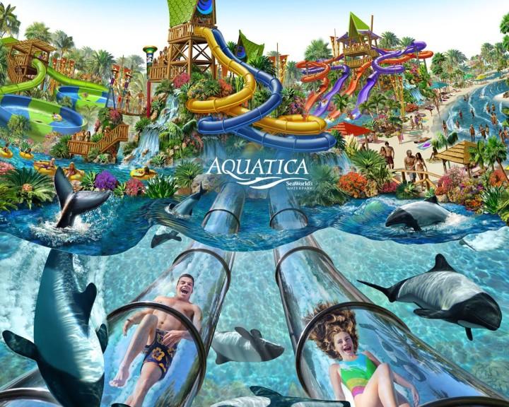 Aquatica Seaworld Orlando Concept Art Image